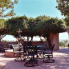 Thumbnail image for Vineyard Estate in Paso Robles For Sale!