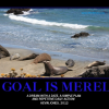 Thumbnail image for Goals are merely …