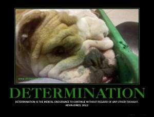 DETERMINATION 1 300x229 DETERMINATION