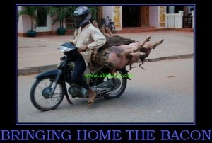 bring home the bacon 300x202 A Humorous History Lesson