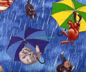raining cats and dogs 300x252 A Humorous History Lesson