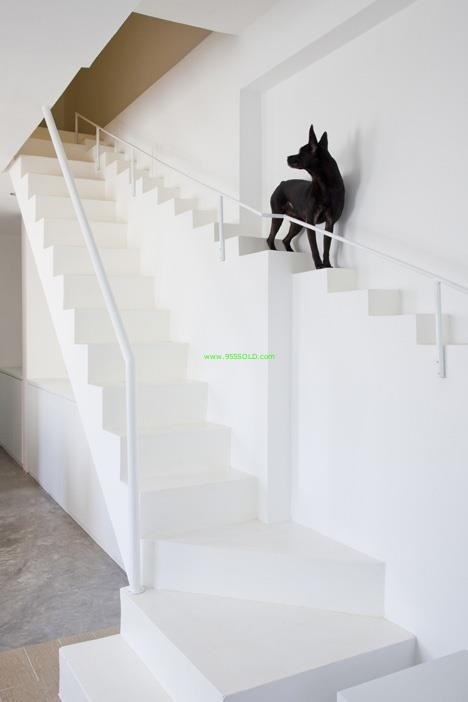 stairs to bed for pets