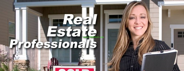 Real Estate Professional : Why you should use a professional real estate agent