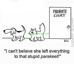 probate cartoon California Probate Timeline